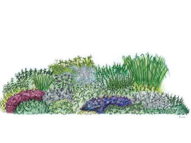 Herb Garden Design Plan | HGTV on border rock garden design, autumn floral border design, plant border design, border shade garden design, border flower design, border garden design ideas, border christmas design,