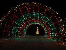 16 festive outdoor lighting ideas 16 photos - Christmas Lights Decorations Outdoor Ideas