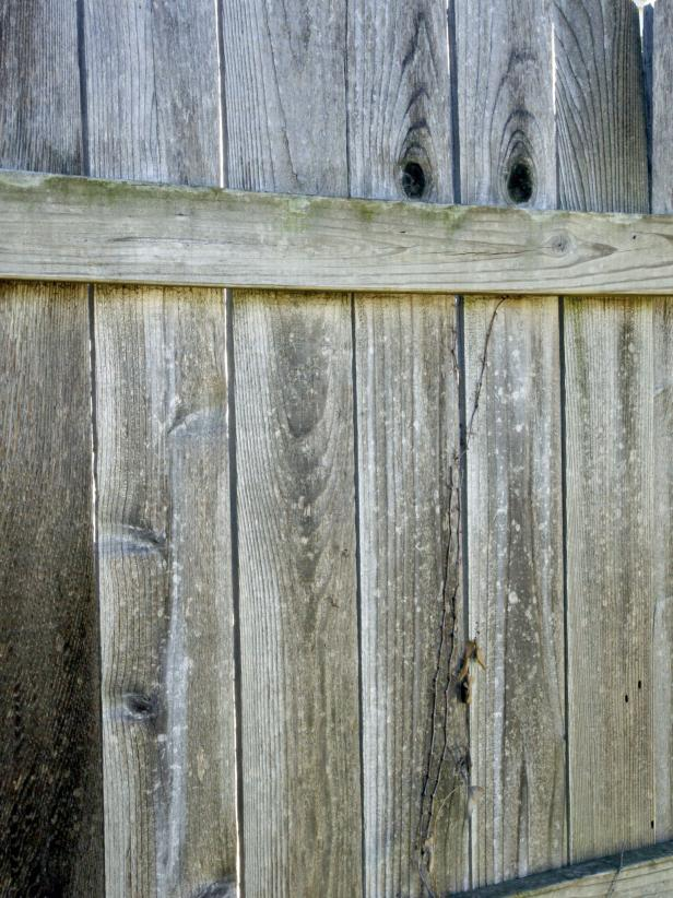 Fence Painting and Staining Guide: Quick Tips | HGTV