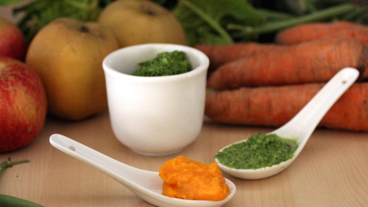 Make Your Own Organic Baby Food   HGTV