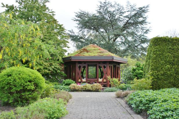 Green Roof Gazebo