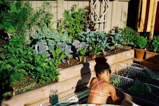 1452850519201 Raised Vegetable Gardens Garden Designs Ideas on landscaping ideas for front flower gardens, gardening ideas for small gardens, raised vegetable planters, raised vegetable beds, landscape design ideas for vegetable gardens,