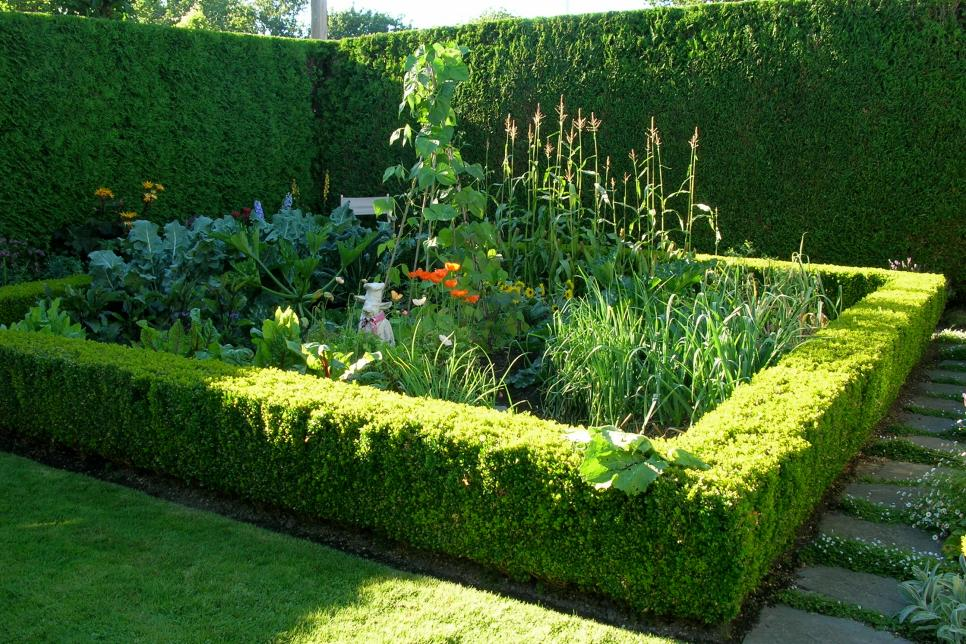 Easy Herb and Vegetable Garden Designs | HGTV