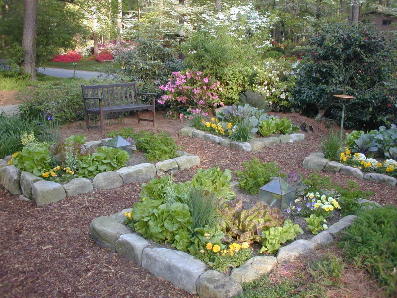 What to plant in your vegetable garden hgtv for Home garden layout