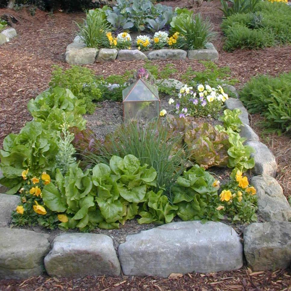 Easy Herb And Vegetable Garden Designs Hgtv