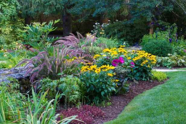 Designing Perennial Combinations Hgtv