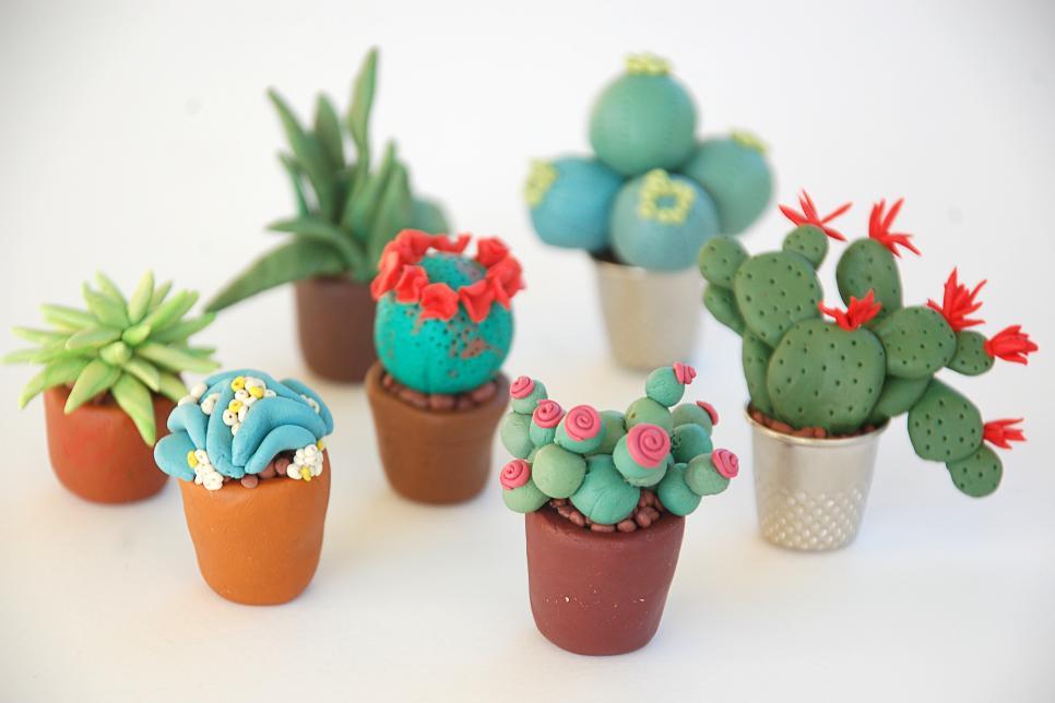 Make Fairy Garden Miniature Plants