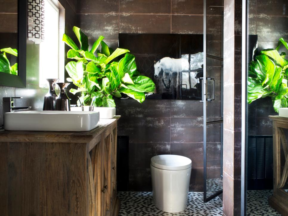 Plants to Grow in Your Bathroom | HGTV