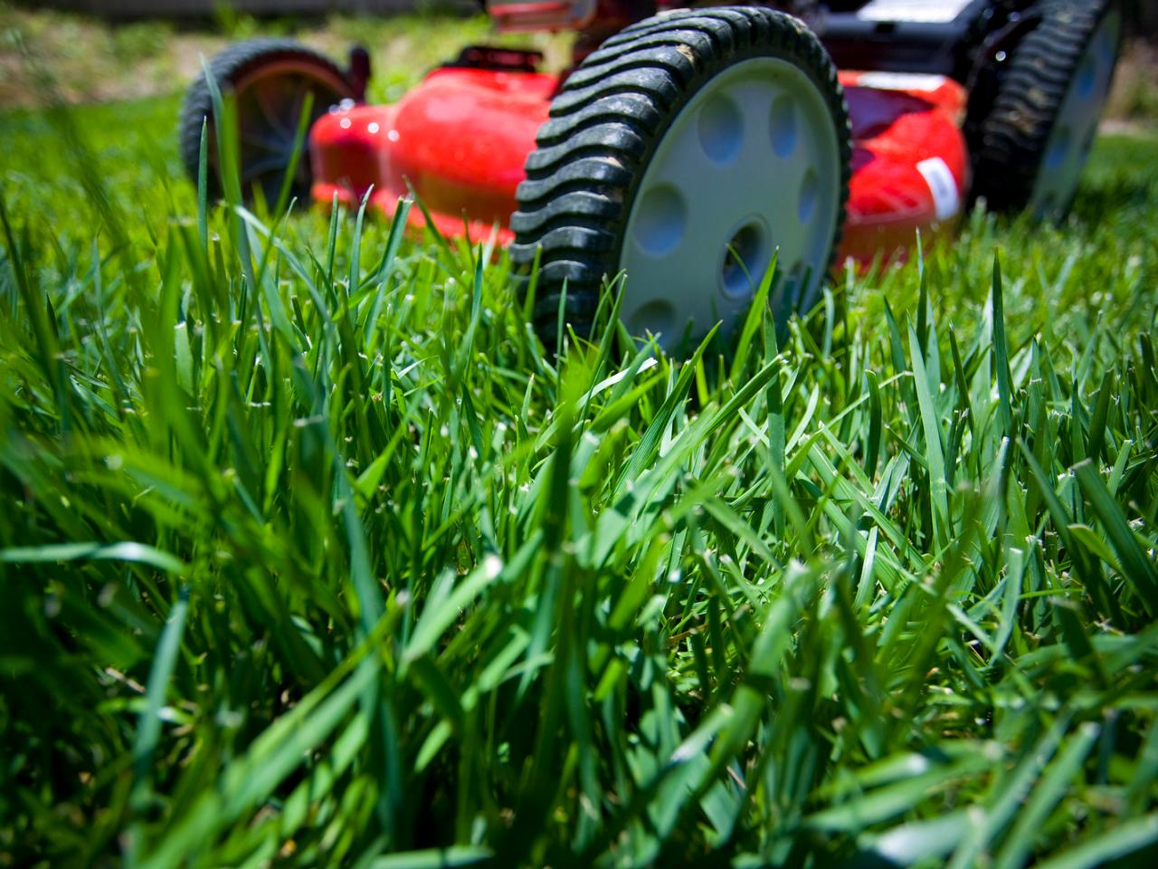 Be Smart About Lawn Care Hgtv