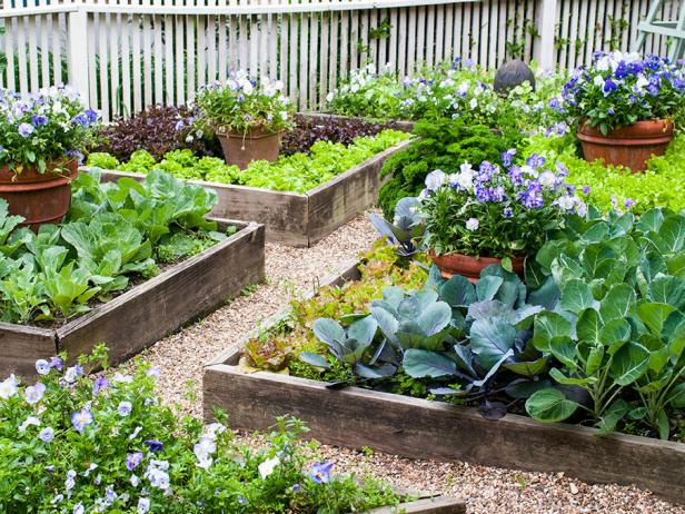 Formal Raised Bed Garden
