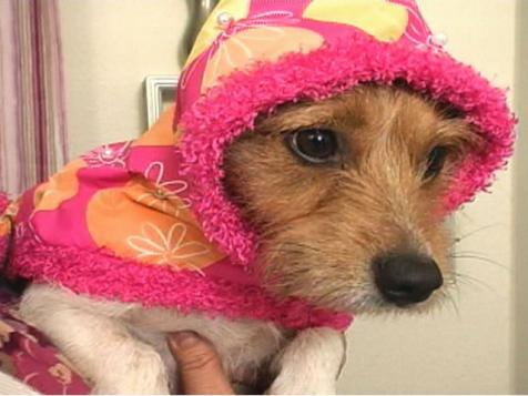 Sew a Dog Raincoat and Collar