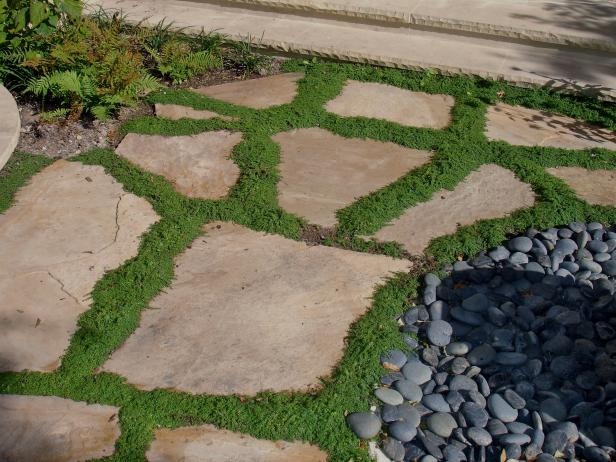 Flagstone Walkway With Stones
