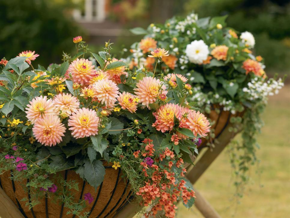 40 Best Fall Planter And Container Garden Ideas Hgtv