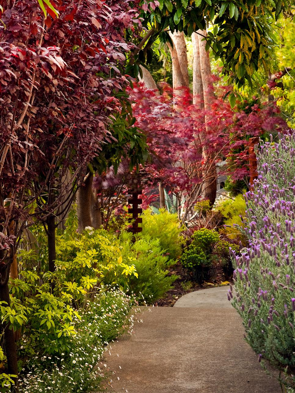 Walkway Lined with Colorful Flowering Plants and Trees