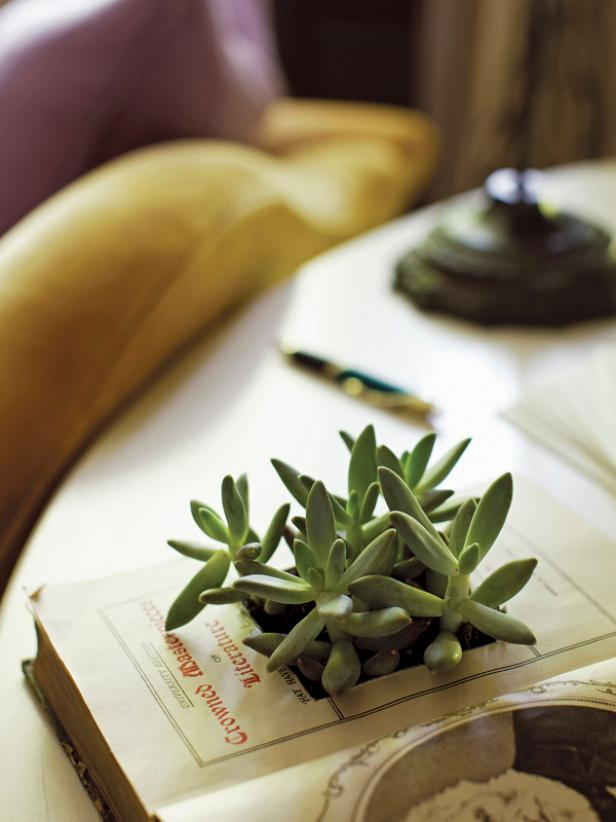 How to Make a Vintage Book Planter
