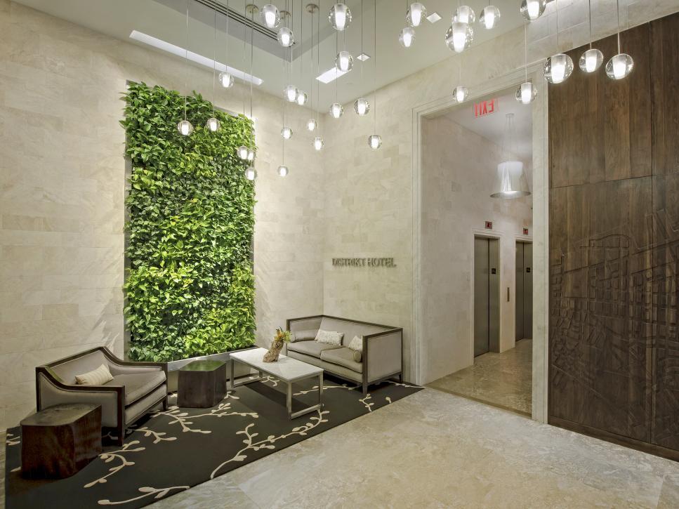 Design Trend Living Walls Hgtv
