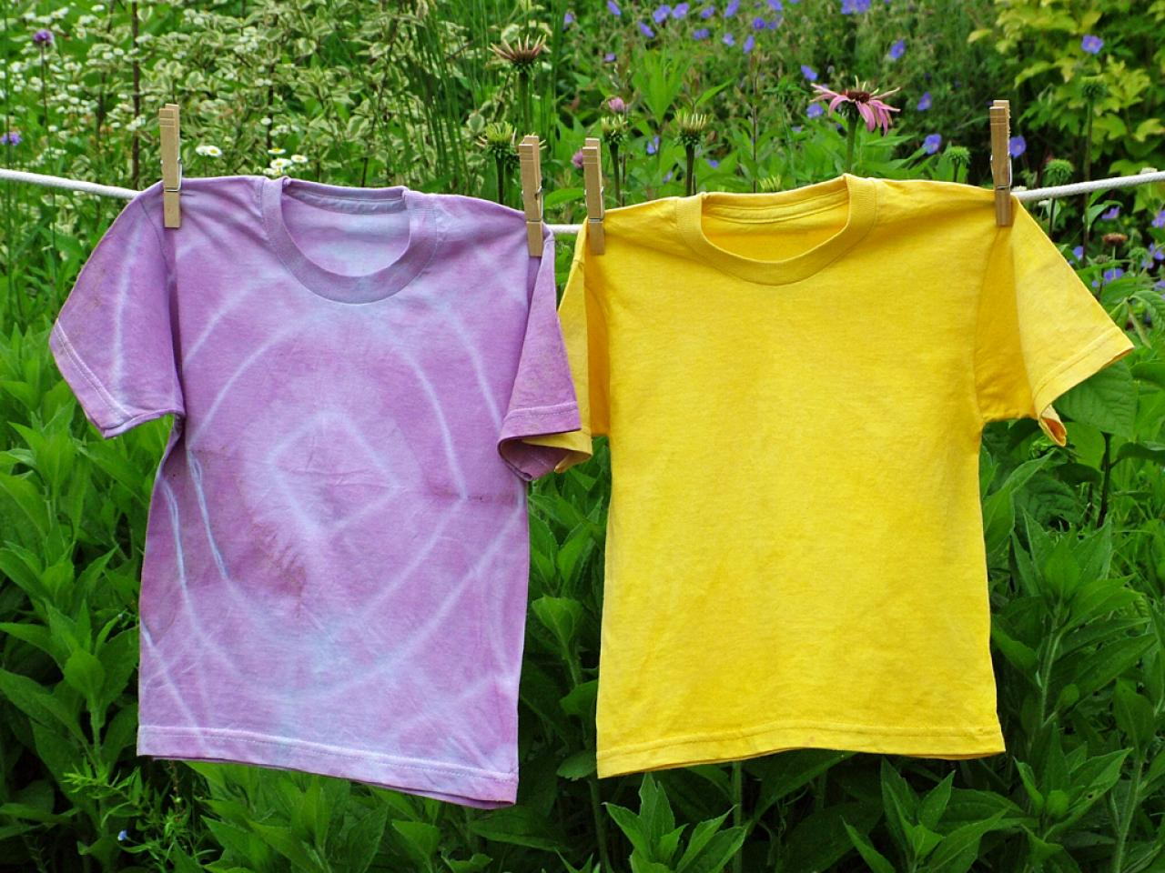 Dye A Shirt With Veggies And Fruits Hgtv
