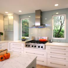Contemporary White Kitchen with Frosted Glass Cabinets