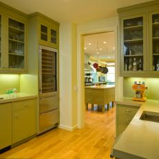 Modern Butler's Pantry With Green Cabinets