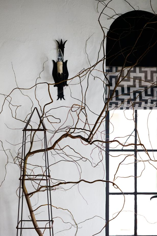 White Room With Gnarly Tree Branch Supported in Metal Sculpture
