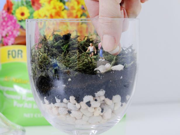 Place the rock with the figures into the terrarium.