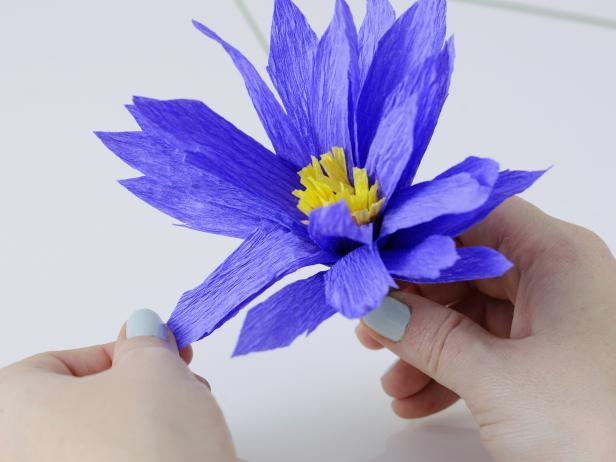 To add the finishing touch on this crepe paper daisy pull down the petals so the stamen is visible.