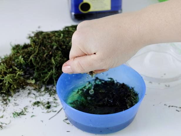 After soaking the moss for your terrarium in a water-filled bowl, squeeze out the extra water.
