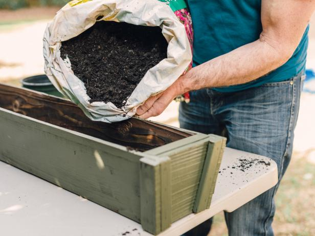 Fresh potting soil is important to the health and