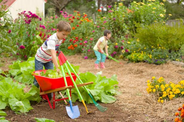 Image result for kids garden photos