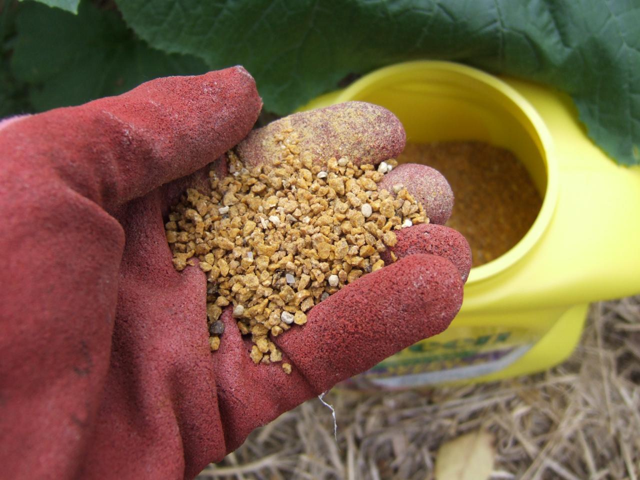 When To Apply Herbicides Hgtv