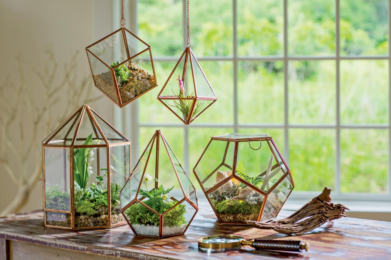 11 Easy Gardening Tips For Beginners Hgtv S Decorating Design  # Terrarium Dangle