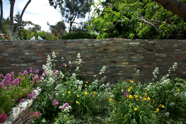A bed of wildflowers set before a colored stone wall