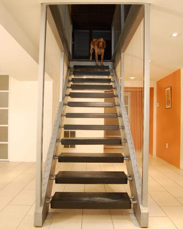 Brown Dog at Top of Floating Staircase