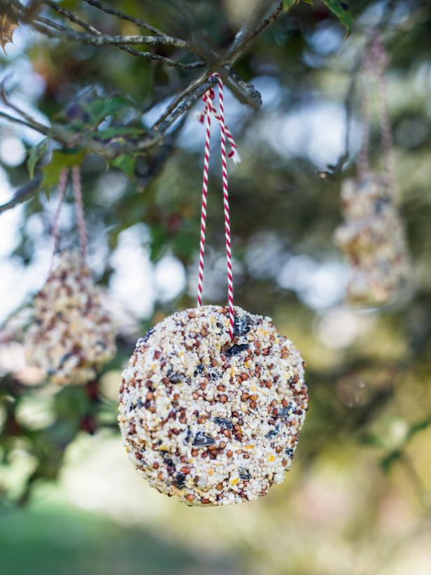 birdseed ornaments - Bird Christmas Decorations