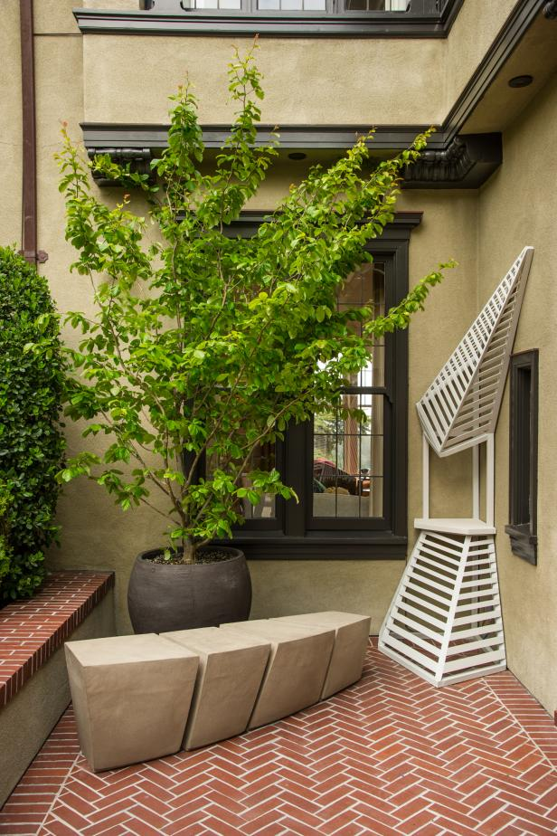 Potted Tree and Concrete Bench