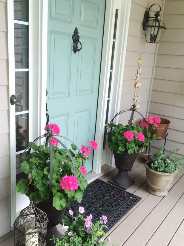 Front Door And Plant Color Combos Hgtv