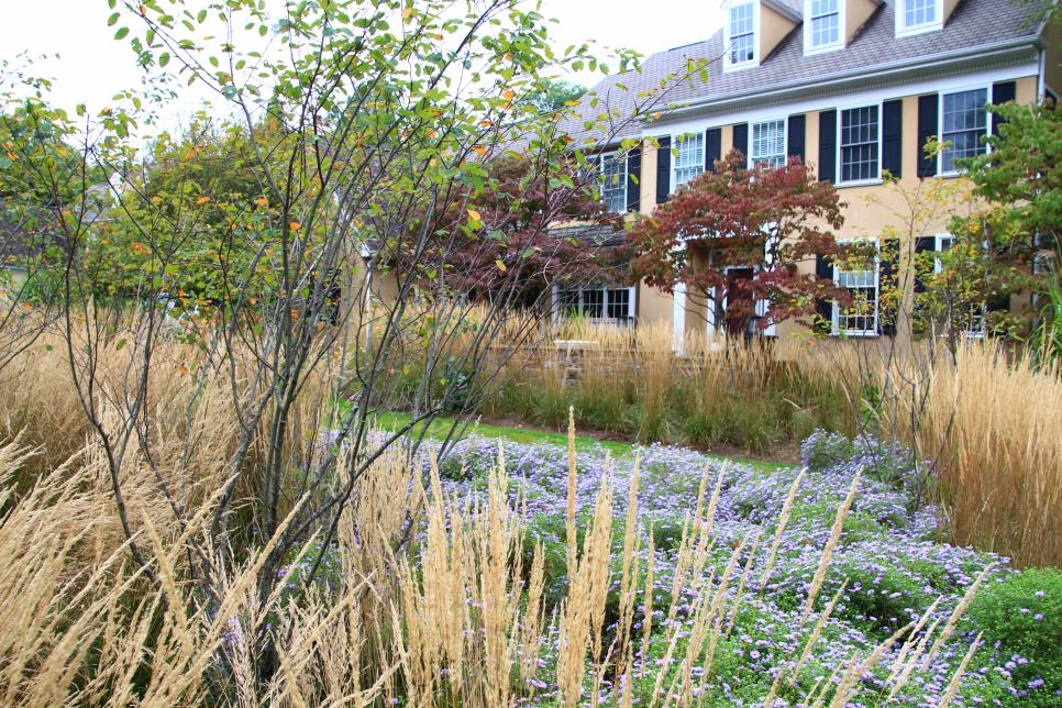 Two Story Home with Ornamental Grass and Low Herbaceous Plant Garden