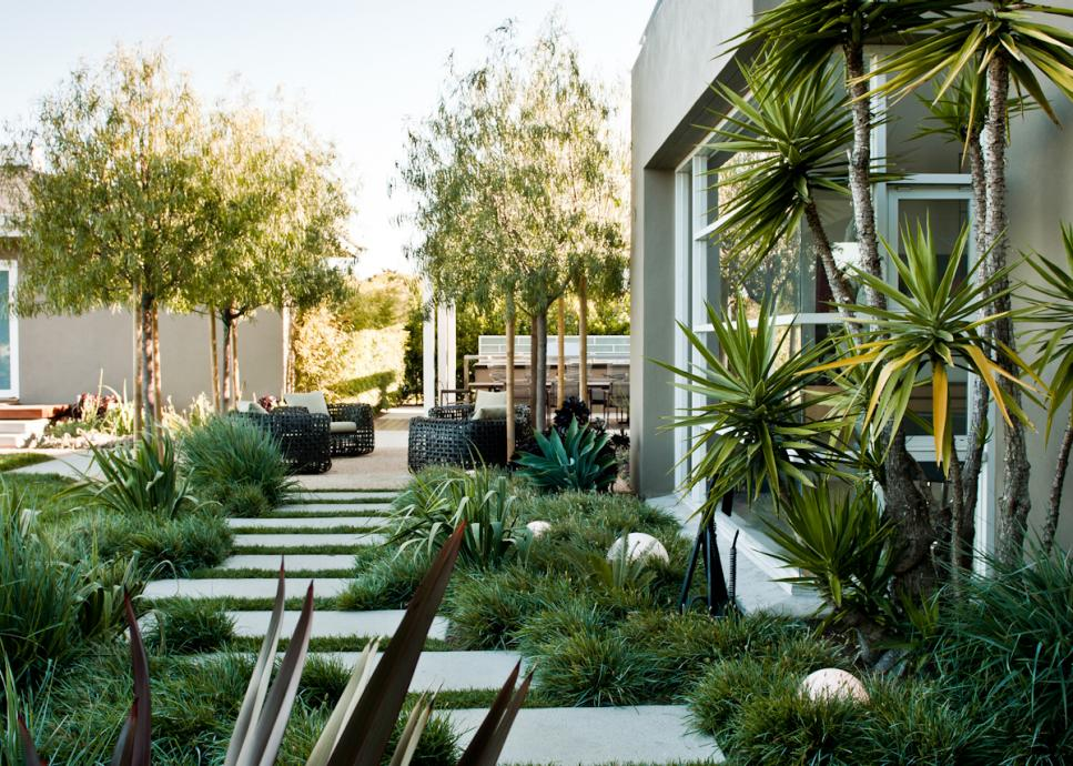 Paver Walkway Lined with Ornamental Grasses and Yucca.