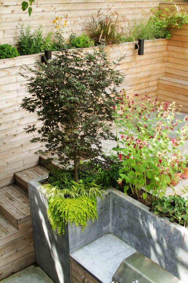 Backyard Garden With Cedar Wood Planks