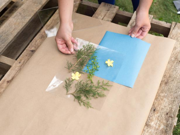 Arrange flowers on sun print paperLay a piece of acrylic over the flowers and paper to sharpen edges and ensure no sun sneaks beneath leaves of flowersPlace print in direct sunlight for 2-5 minutes or until the paper turns white.Rinse paper in waterHang to dry (on clothesline)