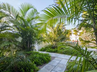 Stone Path Guides Visitors Through Tropical Garden