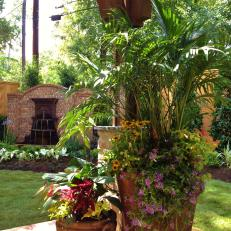 Container Gardens in Backyard