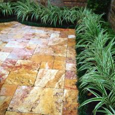 Travertine Patio and Green Plants