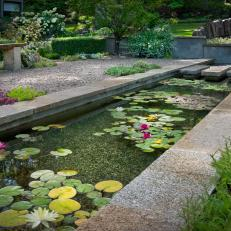 Sophisticated and Soothing Koi Pond
