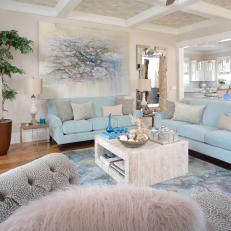 Coastal Living Room With Baby Blue Sofas