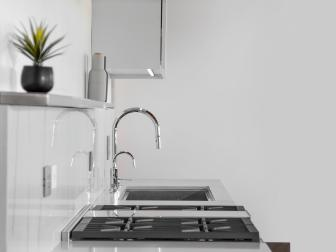 Black and White Modern Kitchen With Houseplant