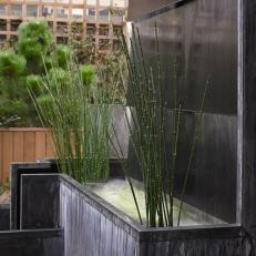 Bamboo-Trimmed Water Feature Offers Serenity in Penthouse Garden