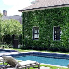 Ivy Wall Thrives in Contemporary Backyard