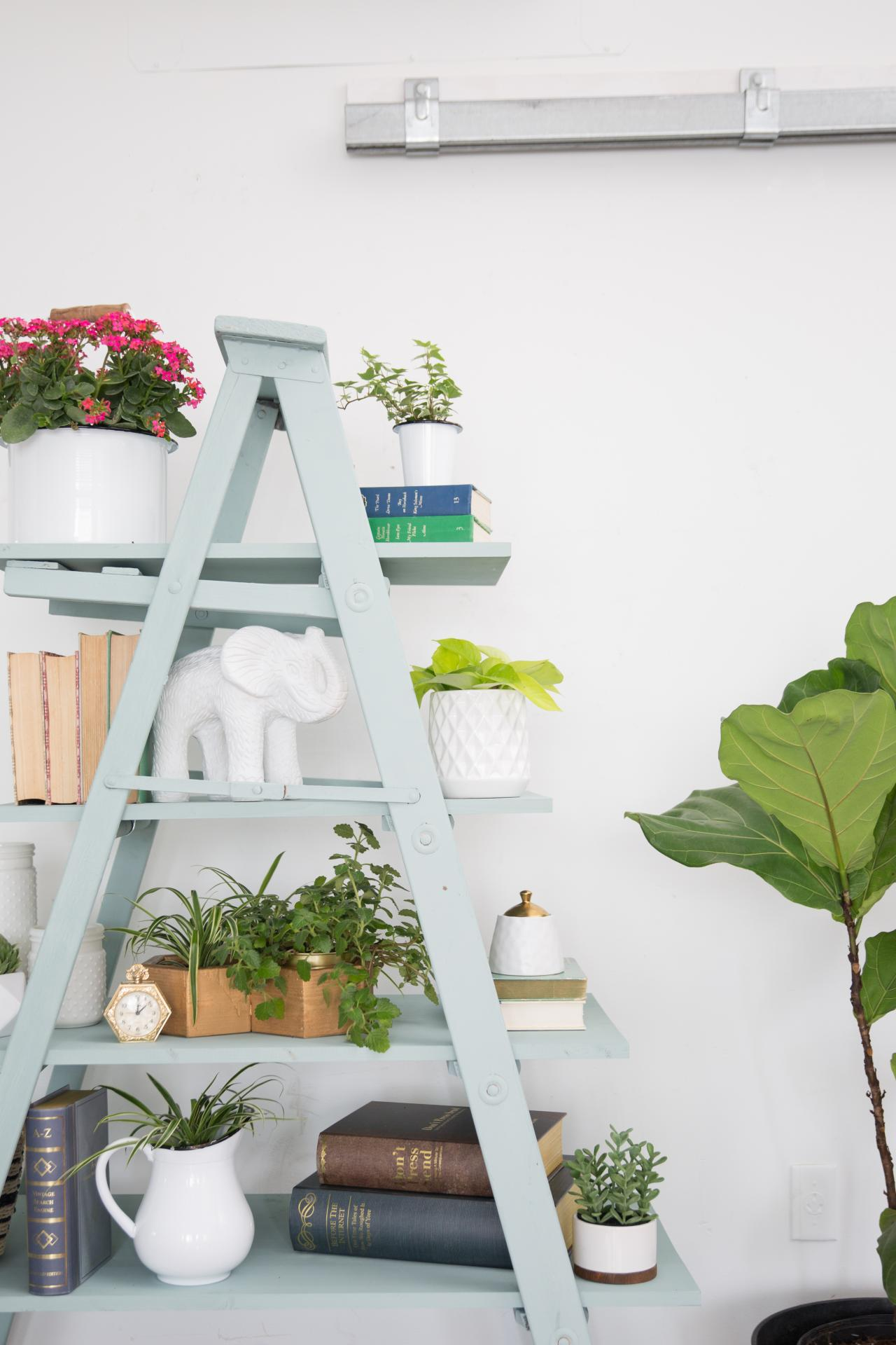 How to Create a DIY Ladder Shelf | HGTV