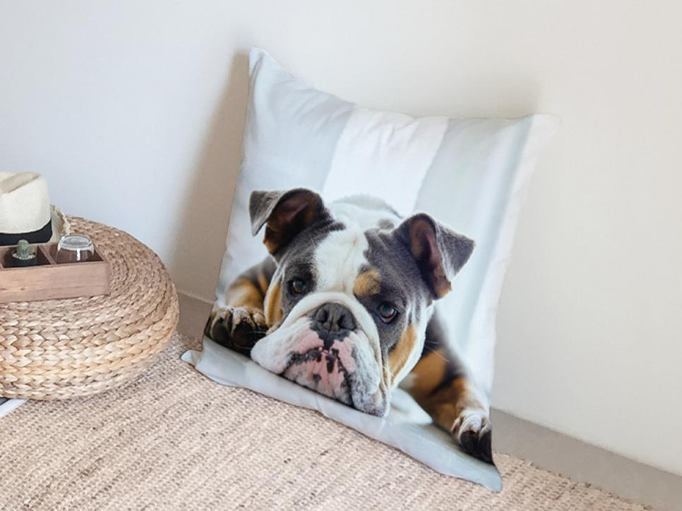 Photo Pillow with Your Pet
